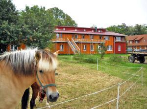 Biohof Medewege - Drieberg Dorf