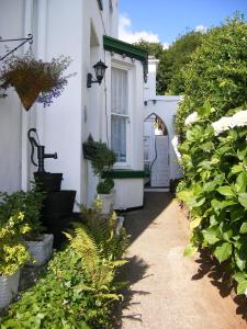 Woodlands Guest House, Affittacamere  Brixham - big - 1