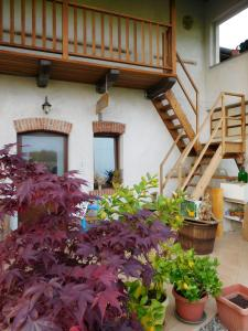 Bed and breakfast Al Rudun - Accommodation - Boves