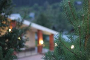 Mini hotel Legenda - Tiskos