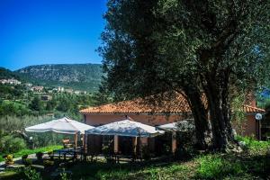 Agriturismo Murikè - Caselle in Pittari