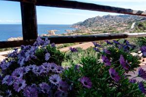 Costa North Sardinia - AbcAlberghi.com