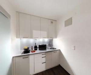 Lehner Appartements, Ferienwohnungen  Schladming - big - 14