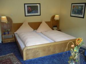 Hotel Traube - Calmbach