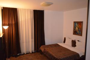 Hotel Taverna Pecicana, Hotely  Pecica - big - 7