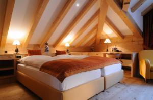 Hotel Albris (10 of 67)