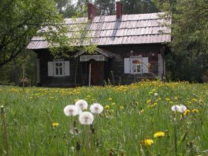Agroturystyka u Ostrowskich