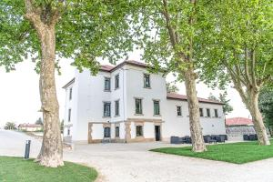 Borralha Guest House, Bed and Breakfasts  Vila Real - big - 37