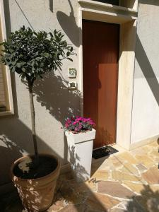 Il Giardino Dei Limoni, Отели типа «постель и завтрак»  Ачи Костелло - big - 12