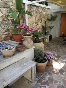 Il Giardino Dei Limoni, Отели типа «постель и завтрак»  Ачи Костелло - big - 19