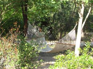 Jim's Jungle Retreat (25 of 59)