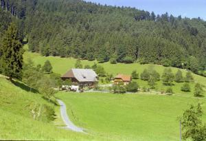 Blumbauernhof - Gutach