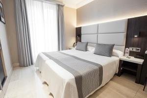 Sercotel Hotel Restaurante Europa (3 of 51)