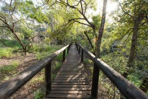 Ndzhaka Tented Camp, Люкс-шатры  Manyeleti Game Reserve - big - 18