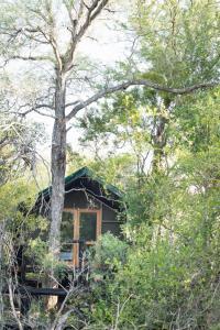 Ndzhaka Tented Camp, Люкс-шатры  Manyeleti Game Reserve - big - 17