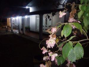 Cokuss Garden House, Villák  Weliweriya - big - 47