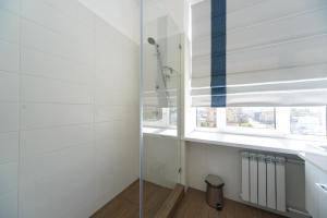 Partner Guest House Khreschatyk, Appartamenti  Kiev - big - 129
