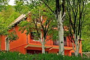 Privatni smještaj Tijanić, Pensionen  Plužine - big - 1