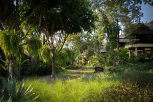Four Seasons Resort Chiang Mai (30 of 49)
