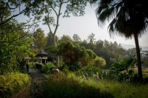 Four Seasons Resort Chiang Mai (33 of 48)