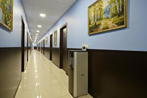 Hotel Viktoria, Hotels  Moscow - big - 17