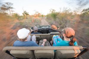Ndzhaka Tented Camp, Люкс-шатры  Manyeleti Game Reserve - big - 12