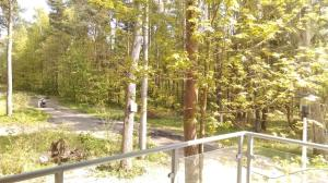 Leśne Tarasy