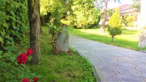 Villa Maria Sole - Accommodation - Revello