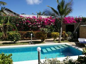 Villa Isla del Amore, Vily  Watamu - big - 37