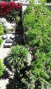 Back to Sorrento, Bed & Breakfast  Sant'Agnello - big - 22