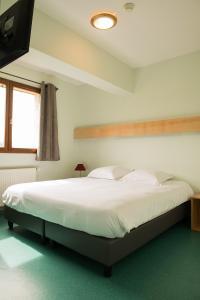 Le Relais Nordique - Hotel - Giron