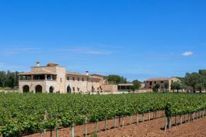 obrázek - Finca Gomera - Luxury Country House - Adults only
