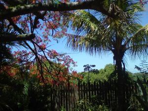 Sitio Recanto da Rasa, Проживание в семье  Tamoios - big - 18