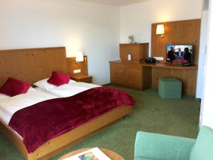Hotel Rockenschaub - Mühlviertel, Hotels  Liebenau - big - 15