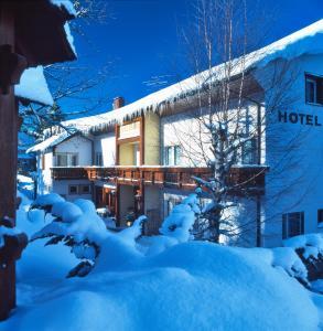 Hotel Waldeck - Feldberg