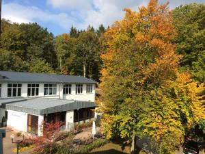 TaunusTagungsHotel, Отели  Фридрихсдорф - big - 17