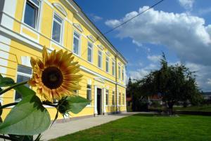 Old School Villa - Hotel - Nova Vas