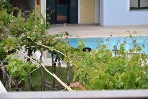Hotel Ariadimari - AbcAlberghi.com