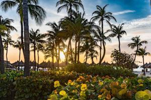 Hilton Aruba Caribbean Resort & Casino (16 of 84)