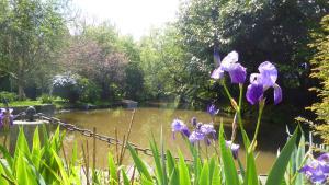 Moulin de Benneville, Affittacamere  Cahagnes - big - 27