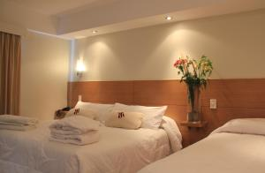 San Martin Hotel y Spa