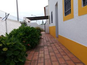 Casa das Hortensias - Vila Nova de Milfontes, Проживание в семье  Вила-Нова-де-Мильфонт - big - 43
