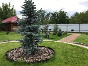 Guesthouse Saksonia, Pensionen  Goryachiy Klyuch - big - 64