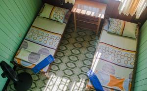 Hostel Casa de las Palmas Tours
