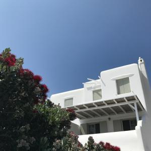 Yakinthos Residence, Apartmánové hotely  Panormos Mykonos - big - 70