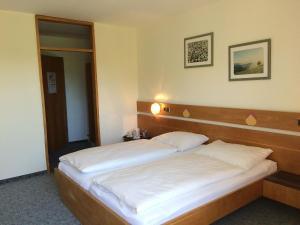 Hotel Rockenschaub - Mühlviertel, Hotels  Liebenau - big - 59
