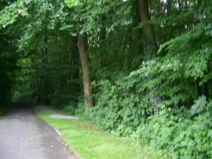 Waldpension Bielefeld, Penzióny  Bielefeld - big - 19