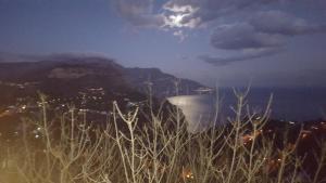 Gli Ulivi Agriturismo, Farmy  Sant'Agnello - big - 96