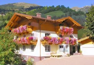 Haus Mitterlechner - Apartment - Dorfgastein