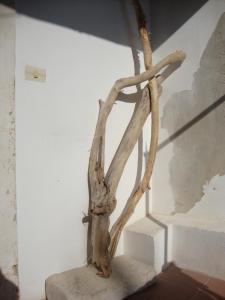 Il Nido di Diana in Ortigia - AbcAlberghi.com